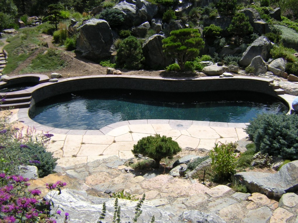 Pool and Spa, Castle Pines, CO